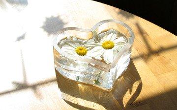 fon, cvety, vaza, para, serdce, pol, steklo, forma, parket
