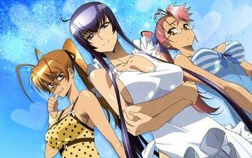 anime, highschool of the dead, kartinka, oboi, yepizod, risunok