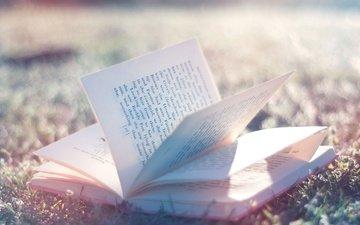 book, znanij, istochnik