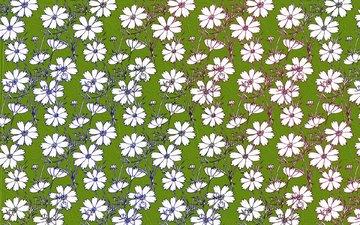 цветы, текстура