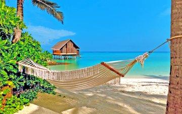 море, пляж, гамак, тропики