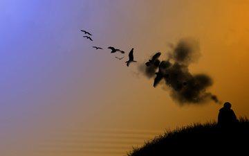 nebo, oranzhevyj, pticy, oxotnik