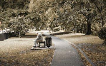 парк, fo, derevya, utro, nastroenie, muzhchiny, dedushka