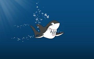 shark, akula, veselaya