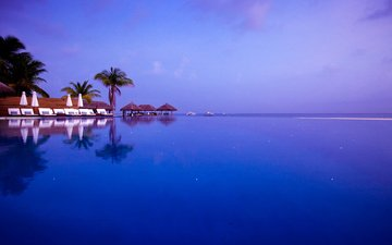 the evening, sea, pool, tropics, the maldives