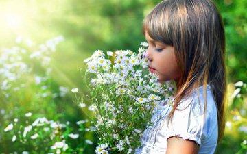 cvety, krasota, devochka