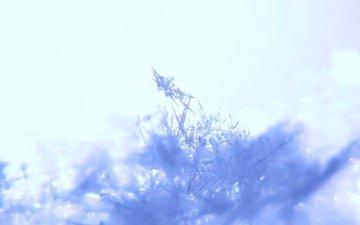 belyj, sneg, snezhinki