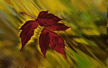 кленовый лист, осенний цвет