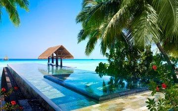 sea, pool, tropics