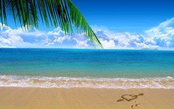 пальма, nastroenie, palmy, lyubov, nastroeniya, plyazhi