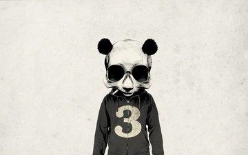 panda, minimal, seryj, chelovek, sigareta