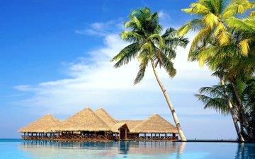 море, пальмы, отдых, бунгало, тропики
