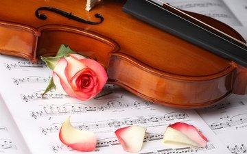 kartinka, oboi, muzyka, iskusstvo, stil