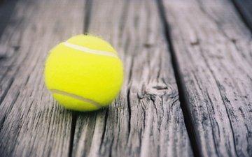 tennis, sport, the ball, ball, doski, myach