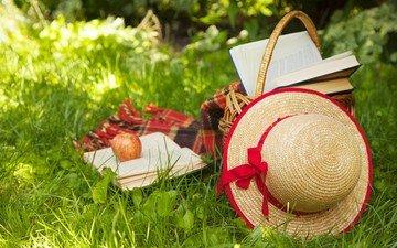трава, книги, корзина, яблоко, плед, шляпа, пикник