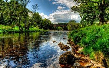 деревья, река, природа, пейзаж, англия