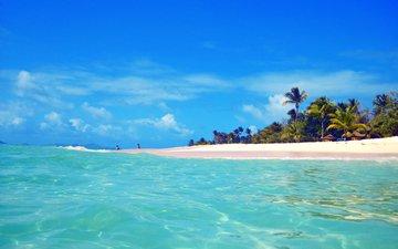 море, пляж, остров, тропики, мальдивы