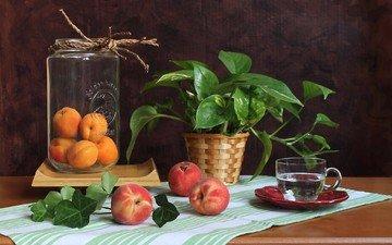 вода, цветок, фрукты, чашка, персики, банка, натюрморт, абрикосы