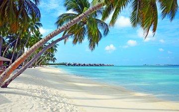 море, пляж, отдых, тропики, мальдивы