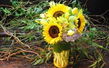 цветы, букет, подсолнухи, ваза, орхидеи, фрезии, букеты, композиции