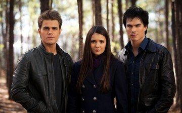 the vampire diaries, the series, nina dobrev, elena, damon, stefan, paul wesley, ian somerhalder