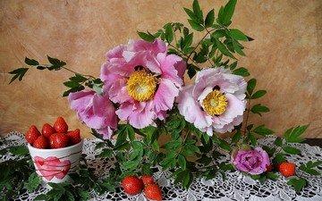 ягода, лепестки, клубника, чашка, салфетка, натюрморт, пион