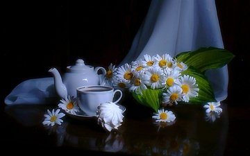 ромашки, черный фон, чашка, чай, чайник, зефир