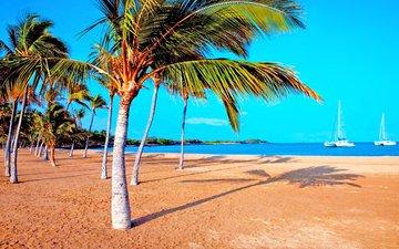 море, пляж, яхты, отдых, тропики