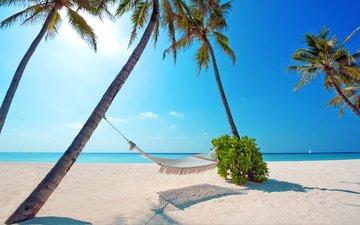 море, пляж, отдых, гамак, тропики