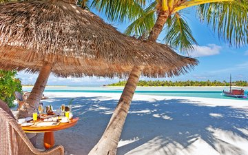 sea, beach, stay, island, resort, restaurant, tropics, the maldives