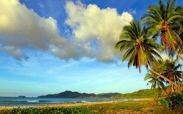 море, пляж, отдых, тропики, вьетнам