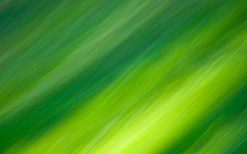 линии, цвета, зелёный