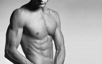 male, body, press, torso, vienna, muscle, bristles