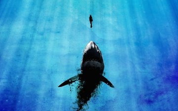 акула и аквалангист