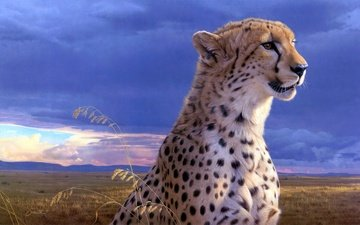 гепард, daniel smith