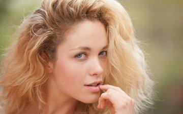 девушка, блондинка, модель, красотка, alissa white