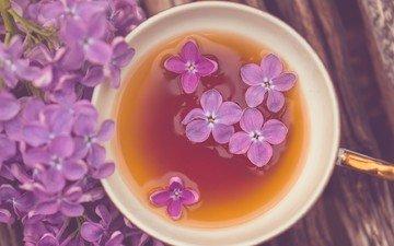 цветы, обои, фон, фиолетовый, кружка, настроения, чашка, чай, цветочки, широкоформатные, hd wallpapers, цветы, полноэкранные, широкоэкранные, fullscreen, валлпапер