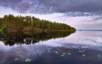 деревья, озеро, лес, швеция, остров, швеции, lake teen, n__rke