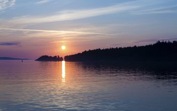 деревья, берег, море, город, швеция, порт, балтийское