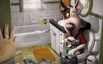собака, зеркало, комната, юмор, прикольно, ванна, весело, 3д