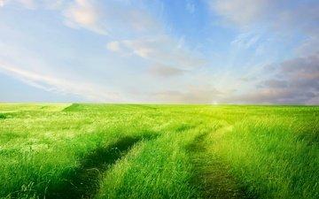 небо, дорога, трава, облака, зелень, поле, горизонт