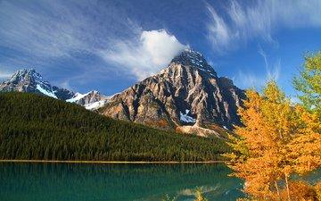 деревья, озеро, горы, лес, осень, канада, альберта, lower waterfowl lake, howse peak, mount chephren, банф, провинция альберта, национальный парк банф