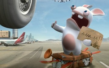 aircraft, rabbit, vote, hitchhiking