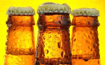 капли, пиво, бутылки, жидкая, крышка, beer bottles, cтекло