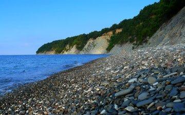 камни, море, пляж, кусты