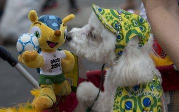 мира, 2014 год, чемпионата, по футболу в, бразилии, талисман, приветствует с собакой