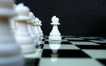 шахматы, пешка, доска.