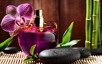 stones, flower, orchid, black, perfume, bottle