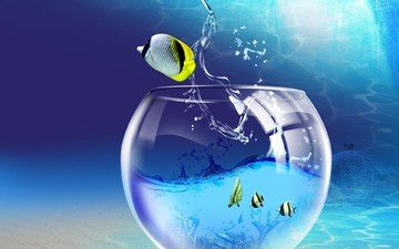 windows 7 wallpaper fish.