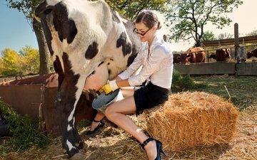 деревья, девушка, сено, лето, молоко, корова, ведро